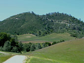 MILLS_Vineyard_with_limestone_above_(4)_th