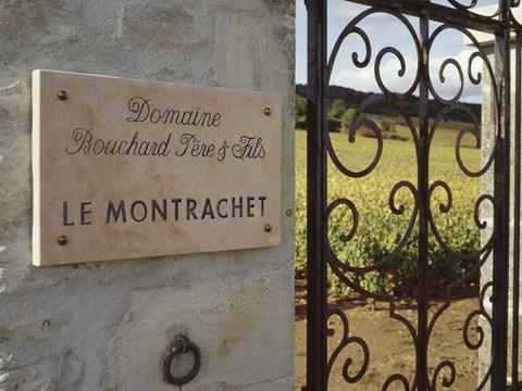 Bouchard Montrachet