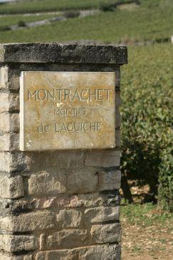 Drouhin montrachet-marquis-de-laguiche-121