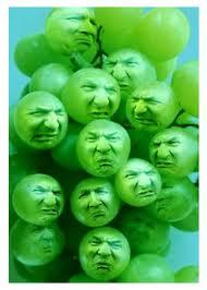 Sour-Grapes.jpg
