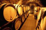 Donatsch cellar