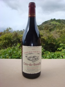 2011 beaujolais Chanrion