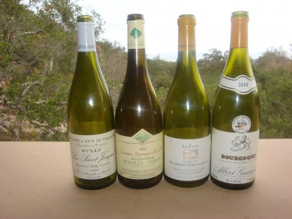 White Burgundy (1)