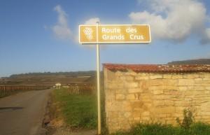 Route de Grand Crus