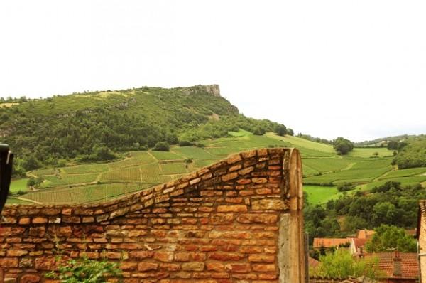 Domaine Saumaize Michelin vineyards
