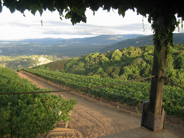 Mount Eden veranda