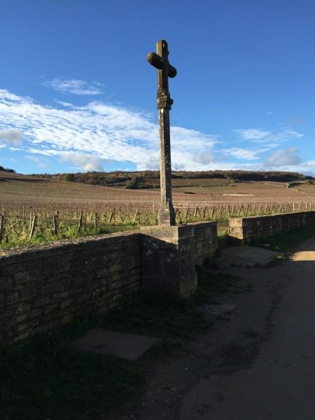 Burgundy 15 VR