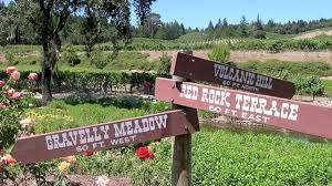 diamond creek vineyard signs