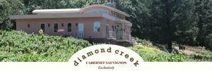 diamond creek photo and logo