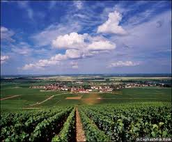 View of Vosne Romanee