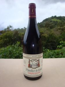 2011 beaujolais diochon