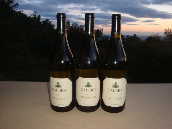 wine 9 005