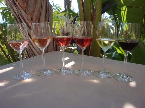 Wine 1 127