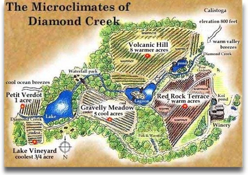 microclimates at Diamond Creek
