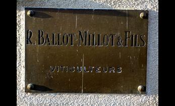 ballot millot sign